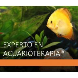 CURSO DE EXPERTO EN...
